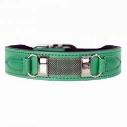 Barclay in Kelly Green
