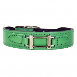 Hamilton Collection in Kelly Green