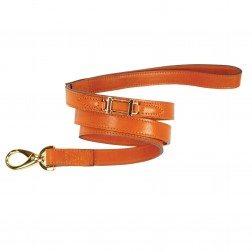 Hamilton Collection Lead in Tangerine & Gold