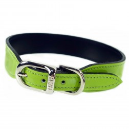 Italian Bright Green Patent Leather in Nickel
