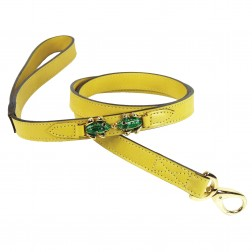 Leap Frog Lead in Canary Yellow