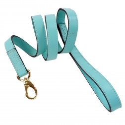 South Seas Lead in Turquoise