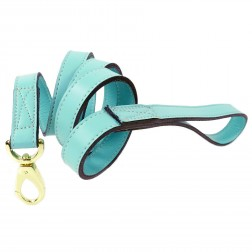 Daisy Lead in Turquoise & Gold