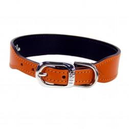 Italian Sunkist Orange Leather in Nickel