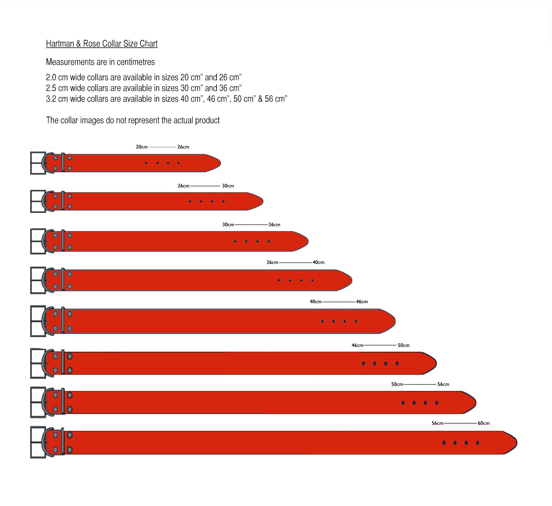 Average Length Of A Dog Collar