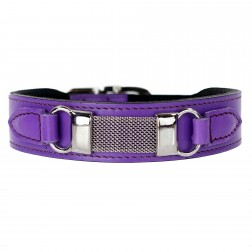 Barclay in Lavender
