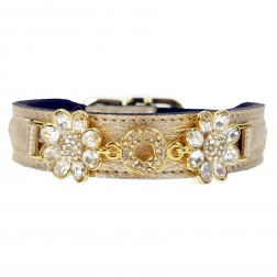 Daisy in Metallic Gold with Clear Crystals
