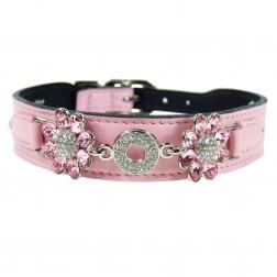Daisy in Sweet Pink