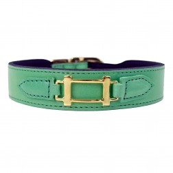 Hamilton Collection in Kelly Green & Gold