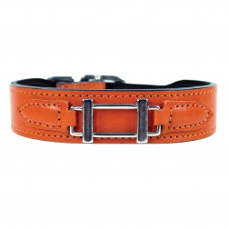 Hamilton Collection in Tangerine & Nickel
