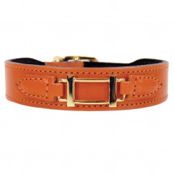 Hamilton Collection in Tangerine & Gold