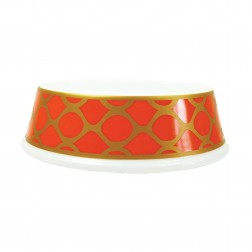 Slightly Irregular Porcelain Dog Bowl in Patterned Tangerine