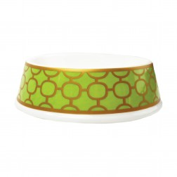Slightly Irregular Porcelain Dog Bowl in Patterned Lime